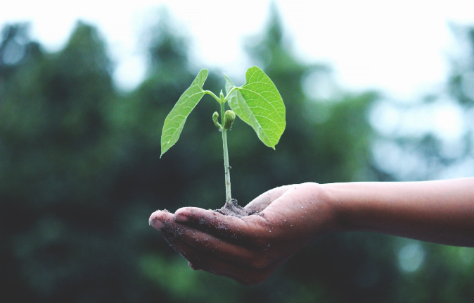 Socially Responsible Investing Grows Up