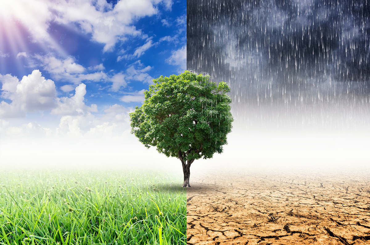 Climate Change and the Rise of ESG Investing