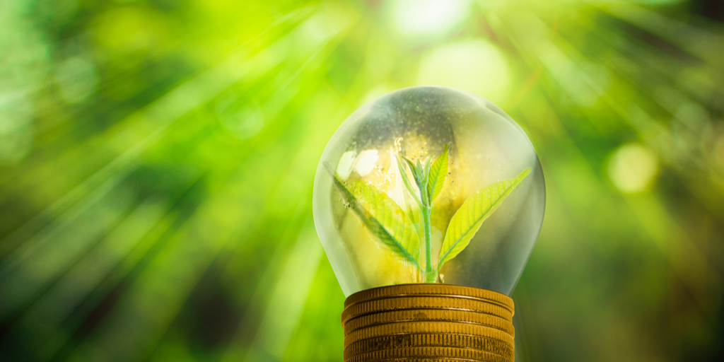 Sustainable investing is surging. How to decide if it's right for you